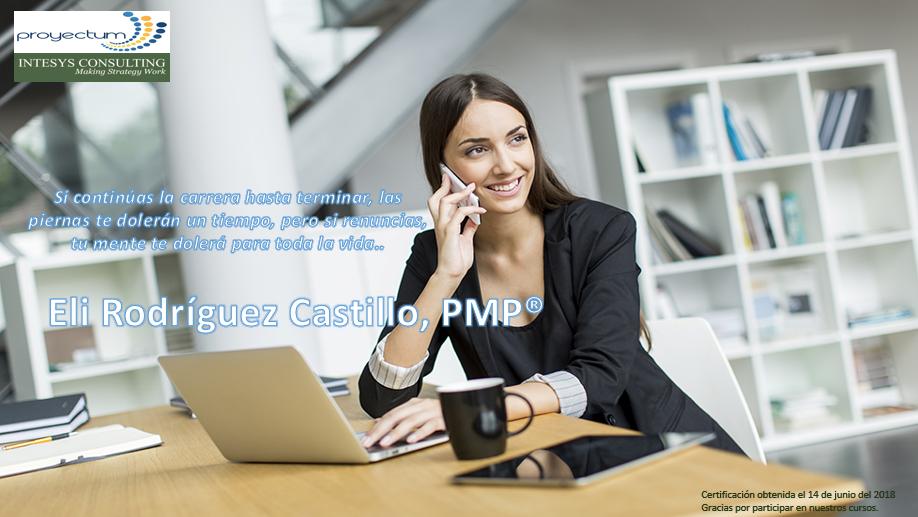 Eli Rodríguez Castillo, PMP®