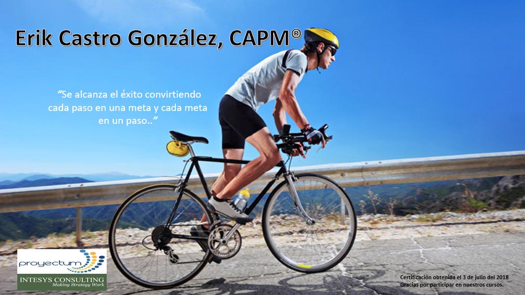 2019 Erik Castro González, CAPM®