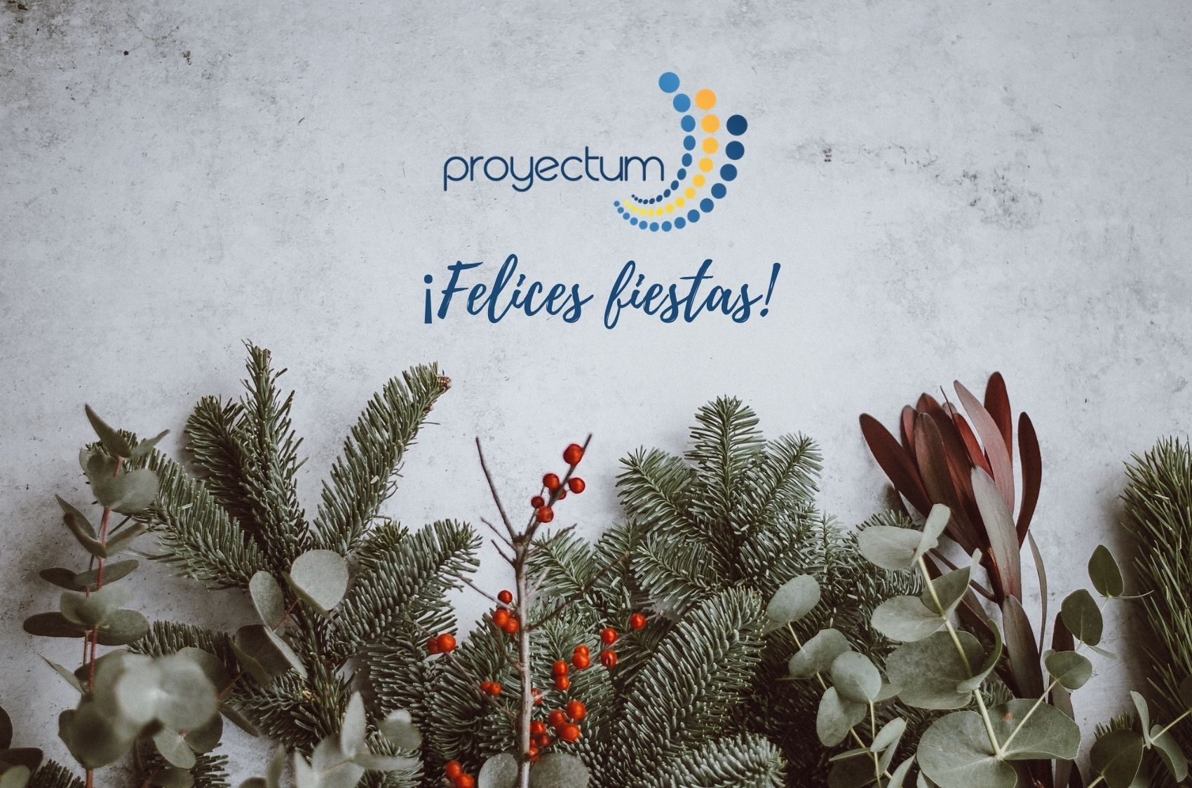 Proyectum Felices Fiestas